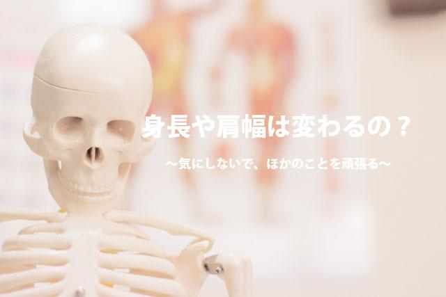 icatch_shinchoya_katahaba_wakawaru