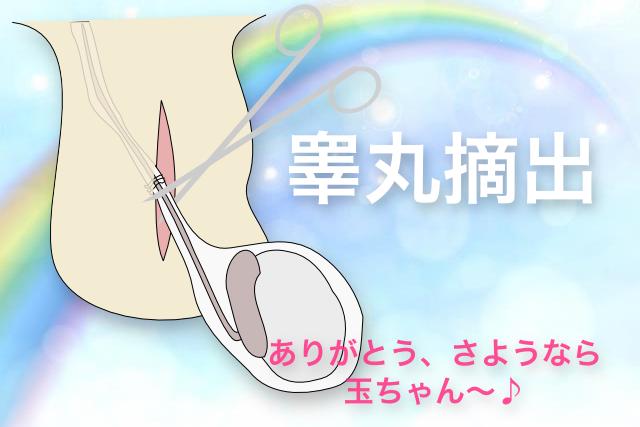 kougan-sayonara
