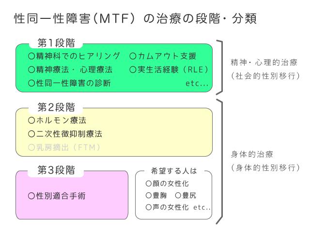 性同一性障害(MTF)の治療の段階・分類 チャート